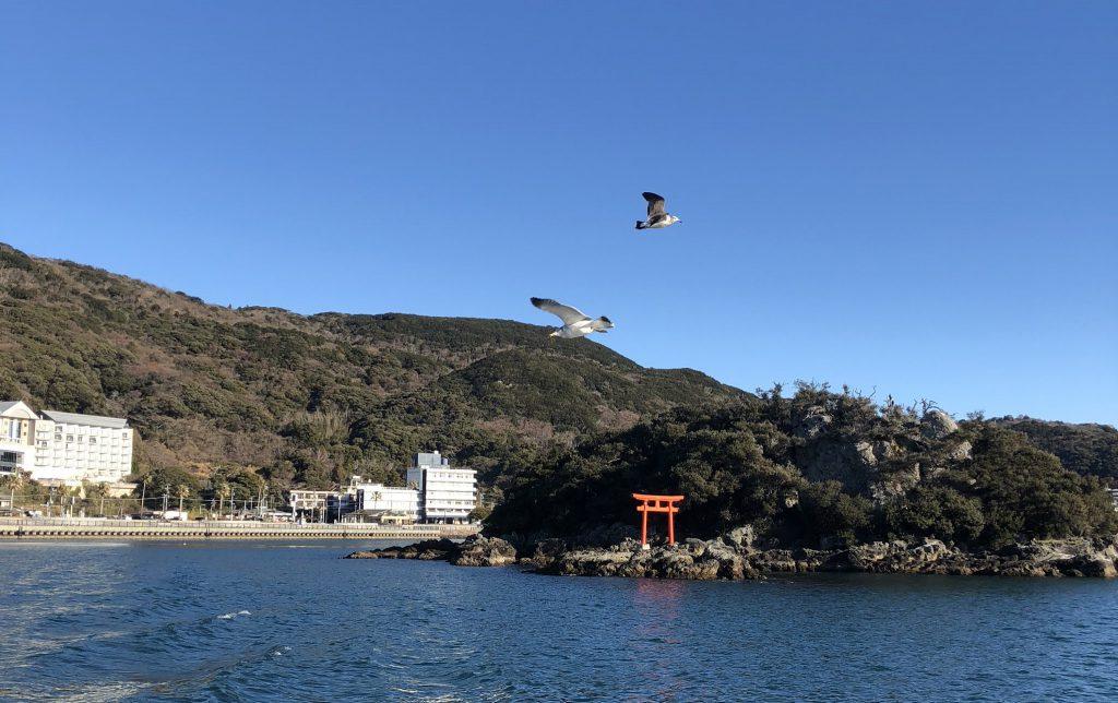Free as a Kite